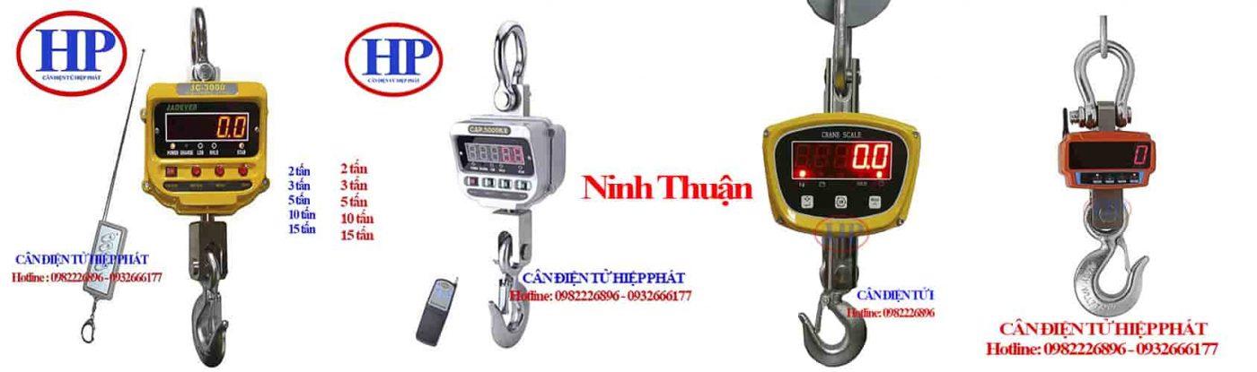 can-treo-dien-tu-3tan-ninh-thuan