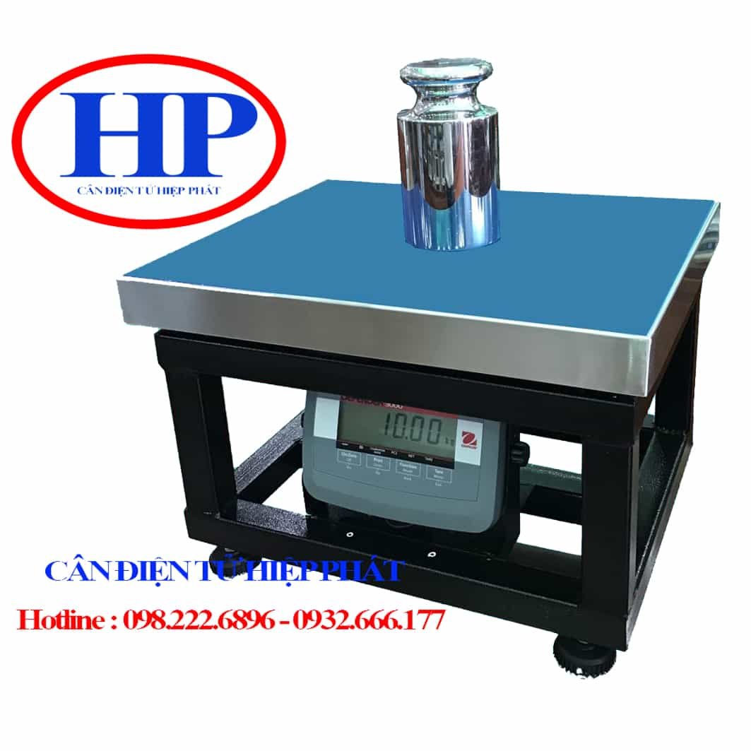 can-ghe-ngoi-100kg-ohaus-t31p
