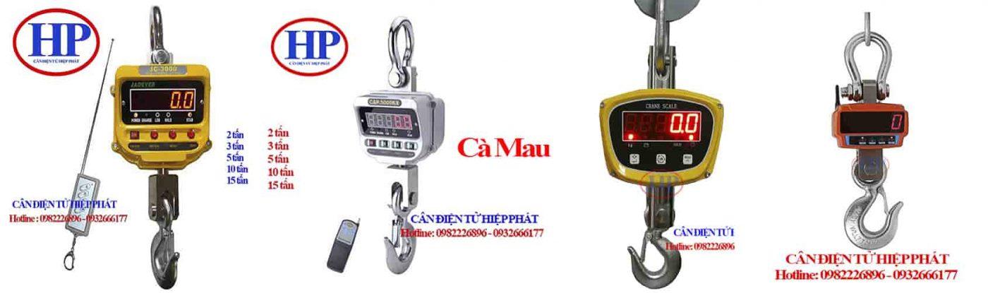 can-treo-dien-tu-10tan-ca-mau